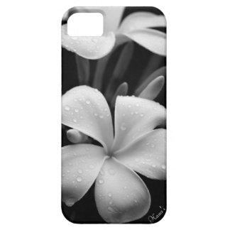 Plumeria iPhone case iPhone 5 Cases