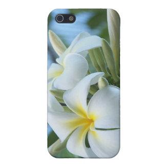 Plumeria iPhone 5 Cover