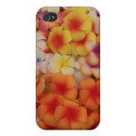 Plumeria IPhone Case iPhone 4/4S Case