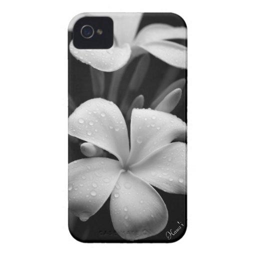 Plumeria iPhone case iPhone 4 Cases