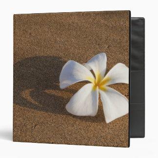 Plumeria on sandy beach, Maui, Hawaii, USA 3 Ring Binder
