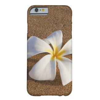 Plumeria on sandy beach, Maui, Hawaii, USA Barely There iPhone 6 Case