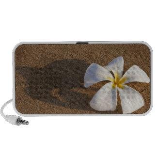 Plumeria on sandy beach, Maui, Hawaii, USA iPhone Speaker