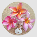 Plumeria on Shells on Beach Classic Round Sticker