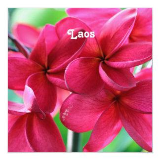 Plumeria rosado invitación 13,3 cm x 13,3cm
