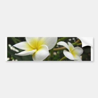 Plumeria Rubra Macro Bumper Sticker