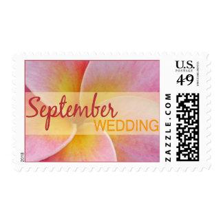 Plumeria September Wedding Stamps