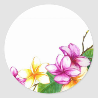Plumeria sticker, Tropical theme flowers Classic Round Sticker