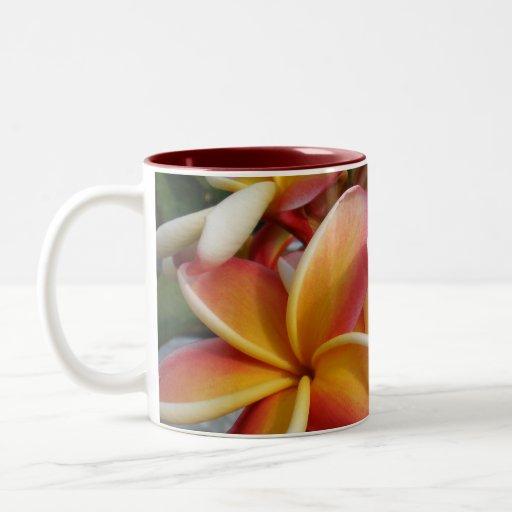 plumeria taza