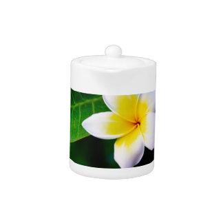 Plumeria Teapot