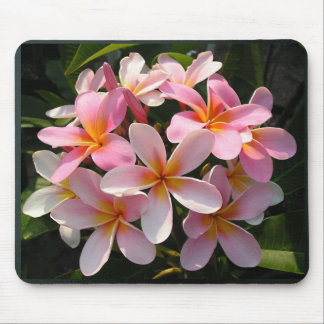 Plumerias in Bloom Mouse Pads
