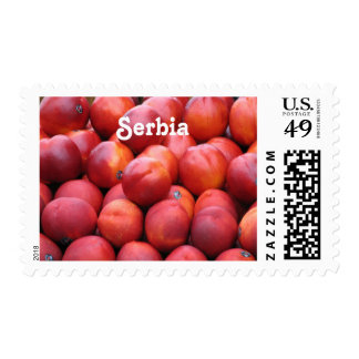 Plums Stamp