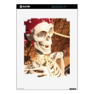 Plunder Party! iPad 2 Skins