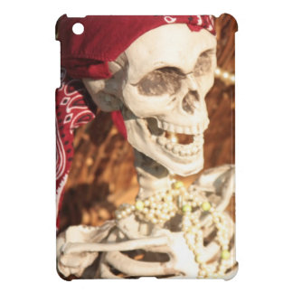 PLUNDER PARTY! iPad MINI COVER