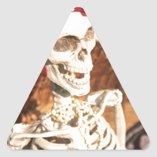 PLUNDER PARTY! TRIANGLE STICKER