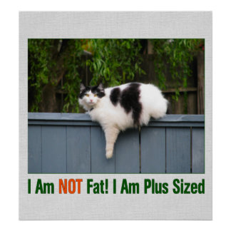 Plus Sized Kitty Poster