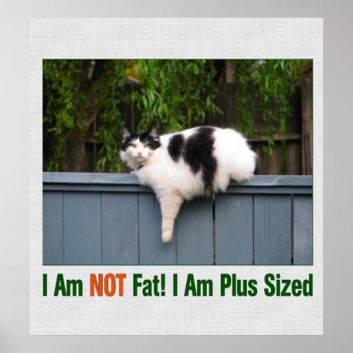 Plus Sized Kitty Print