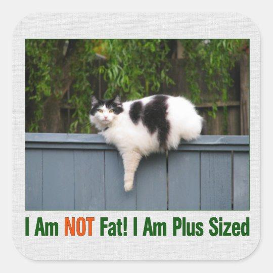 Plus Sized Kitty Square Sticker