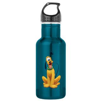 Pluto | Cartoon Front Water Bottle