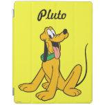 Pluto Sitting 3 iPad Cover