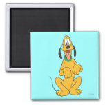 Pluto Sitting 6 2 Inch Square Magnet