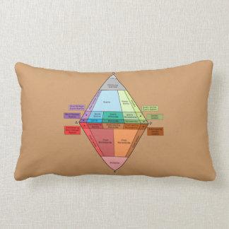 Plutonic Rock QAPF Diagram Throw Pillow