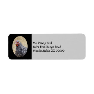 Plymouth Barred Rock Hen Photograph Label