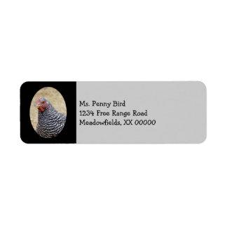 Plymouth barró la fotografía de la gallina de la etiquetas de remite