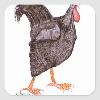 PLYMOUTH ROCK HEN, tony fernandes Square Sticker