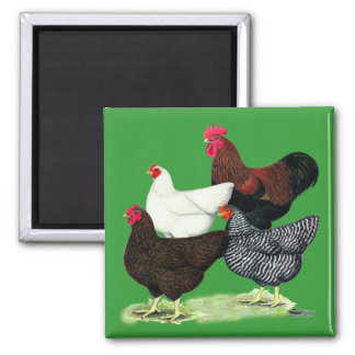 Plymouth Rock Quartet 2 Inch Square Magnet