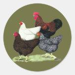 Plymouth Rock Quartet Round Stickers