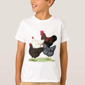 Plymouth Rock Quartet T-Shirt