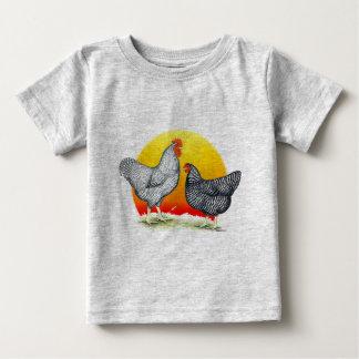 Plymouth Rocks:  Sunrise Baby T-Shirt