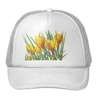 PMACarlson Spring Crocus Mesh Hat