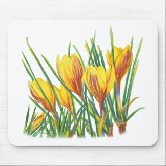 PMACarlson Spring Crocus Mouse Pad
