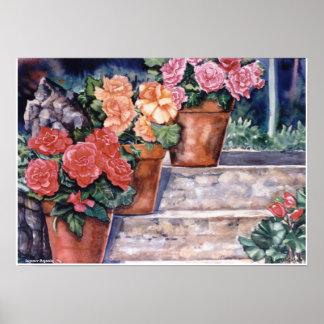 PMACarlson  Summer Begonias Poster