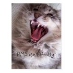 PMS isn't Pretty! Postcard