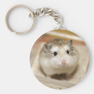 PMT stare (keychain)