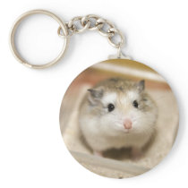 PMT the baby hamster: Stare Keychain