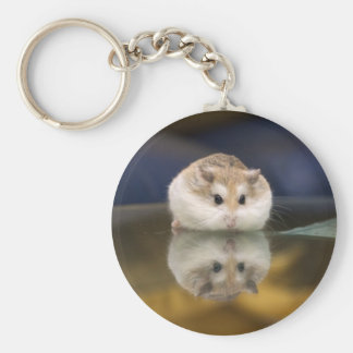 PMT the hamster: Reflections Keychain