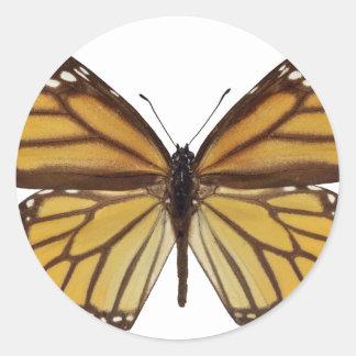 Png aislado de la mariposa de monarca pegatinas redondas