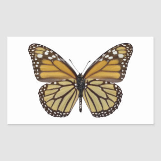 Png aislado de la mariposa de monarca rectangular pegatina