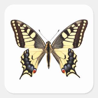 Png aislado de la mariposa del swallowtail pegatina cuadrada