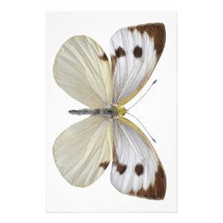 Png blanco grande aislado de la mariposa papelería personalizada