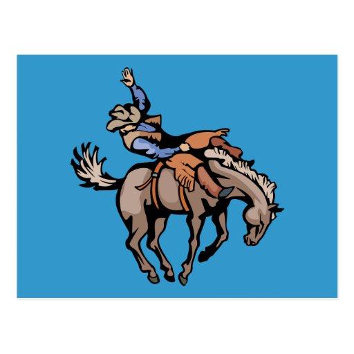 png_cowboys_4162007-108 Rodeo Cowboys Horses Postcard