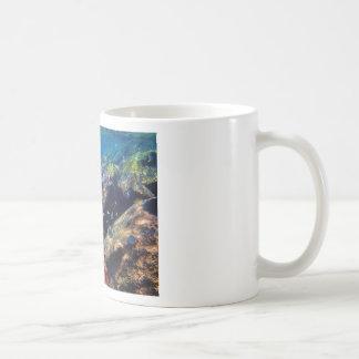 PNUTFISH01 COFFEE MUG