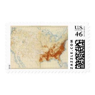 Población coloreada 10 1890