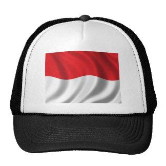 Población de Indonesia Gorros