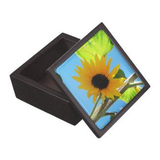 Poca caja de regalo superior del girasol amarillo cajas de joyas de calidad