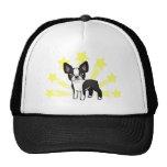 Poca estrella Boston Terrier Gorras De Camionero